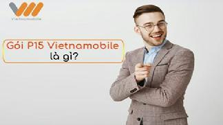 Tìm hiểu gói p15 vietnamobile là gì và có những ưu đãi gì?